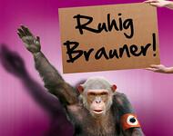 Ruhig Brauner - Woher kommt dieser Ausdruck?