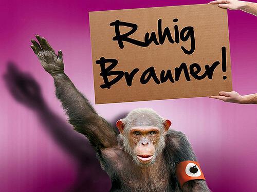 Ruhig Brauner – Woher kommt dieser Ausdruck?