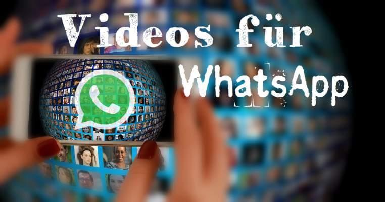 lustige videos kostenlos downloaden