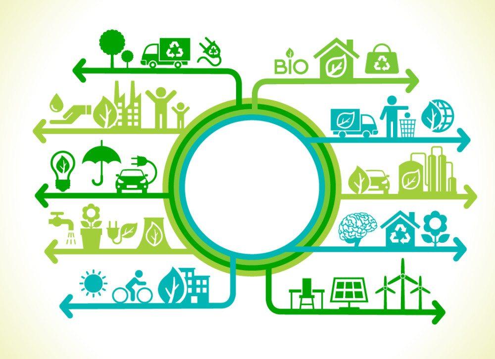 Ökonomie und Ökologie – Unterschied und Erklärung