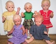 Wert von Schildkröt-Puppen bestimmen - Einfach erklärt